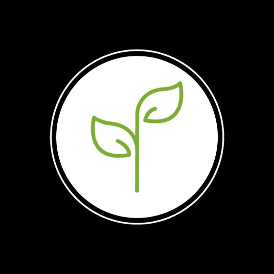 Logo Plant Based Chef